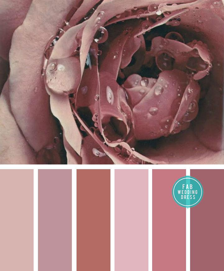Color Combos : Mauve Tones